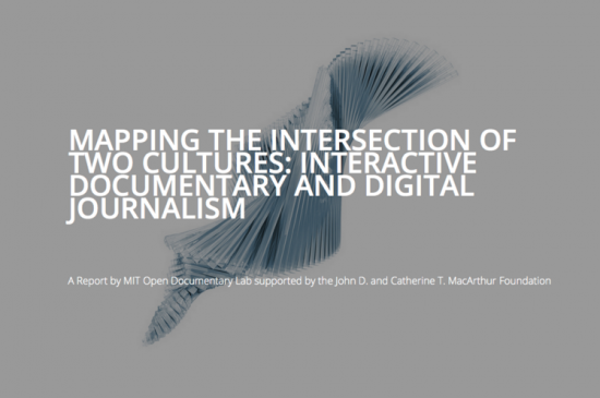 A screenshot of the MIT report's title page.