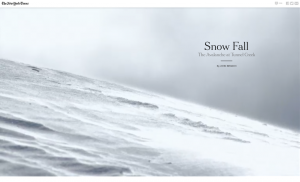 "A screenshot of the award-winning ""Snow Fall"" story produced by the New York Times."