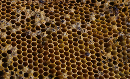 http://www.pbs.org/mediashift/beehive