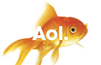 http://www.pbs.org/mediashift/AOL%20fish
