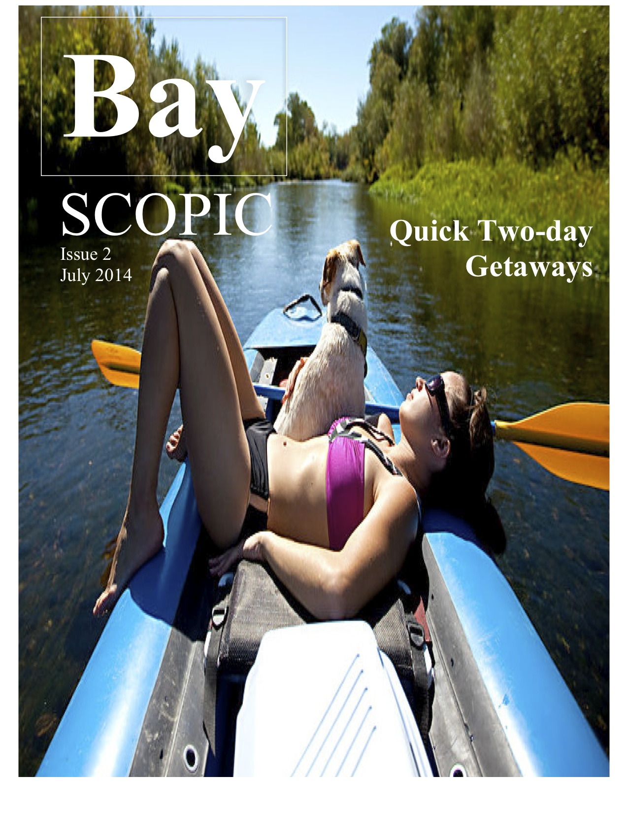 BayScopic would provide a hip guide to happenings around the Bay Area/Design by Anna Hecht