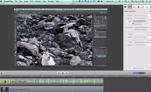 Telestream's Screenflow is one of several options you can use to do screen captures on a Mac.