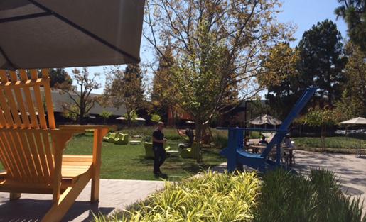 google outdoor space